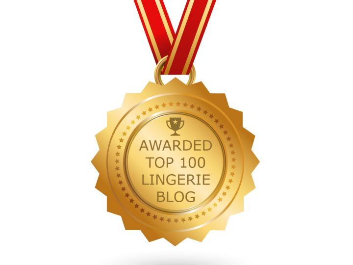 Top 100 Lingerie Blogs Winners
